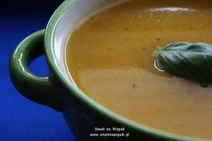 Zupa krem z młodych warzyw.